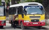 Đề xuất cho xe buýt dưới 17 chỗ được hoạt động như taxi trong đô thị