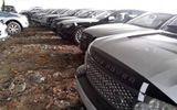 """Giả mạo văn bản Bộ Tài chính để đấu giá hàng trăm xe ô tô vụ Dũng """"mặt sắt"""""""