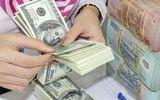 Tỷ giá USD hôm nay 12/6: Đồng USD duy trì ổn định