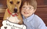 Câu chuyện hy hữu về cậu bé tự kỷ 8 tuổi và chú chó bị bạo hành chờ chết