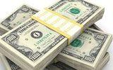 Tỷ giá USD hôm nay 13/7: USD thế giới đứng vững bất chấp vàng tăng giá