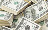 Tỷ giá USD 11/8: Giá USD xoay chiều liên tục giữa vòng xoáy khủng hoảng