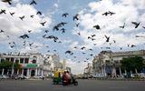 Thị trường - Các thành phố Ấn Độ được dự đoán có tốc độ tăng trưởng nhanh nhất châu Á