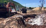 Thị trường - Quảng Ninh tiêu hủy gần 7 tấn lợn chết bốc mùi