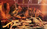 Phát hiện xác hổ giấu trong tủ lạnh tại cơ sở sản xuất đồ gỗ