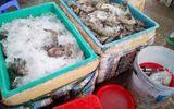 Bắt quả tang một cơ sở bơm chích tạp chất vào hơn 60 kg tôm ở Bạc Liêu