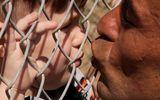 Cảm động hình ảnh ông bố hôn con qua hàng rào trại tị nạn sau một năm xa cách