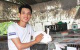 Chàng cử nhân dùng 3 triệu vốn nuôi thỏ, bỏ túi 200 triệu/năm