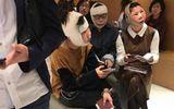 """""""Dao kéo"""" khiến dung nhan khác xa ảnh hộ chiếu, 3 cô gái Trung Quốc bị chặn ở sân bay"""