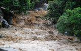 Tin lũ khẩn cấp trên các sông ở Thanh Hóa, Nghệ An, Hà Tĩnh