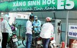 Tin trong nước - Lợi nhuận quá thấp, nhiều doanh nghiệp xin tạm dừng bán xăng sinh học E5