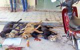 Tin tức - Công an Hà Nội khởi tố vụ người dân đánh chết thanh niên trộm chó