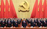 """Nhìn lại 5 năm Chiến dịch """"Đả hổ, diệt ruồi"""" của Trung Quốc"""