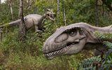 Phát hiện mới về loài khủng long ăn thịt ở châu Phi