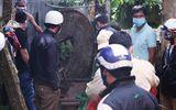 Bàng hoàng phát hiện thi thể người phụ nữ đang phân hủy dưới giếng