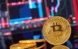 Ngân hàng Goldman Sachs đưa ra cảnh báo bitcoin chạm ngưỡng 8.000 USD