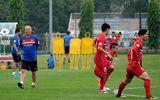 Lý do nào HLV Park Hang Seo nói không với đội bóng cũ của cựu HLV Hữu Thắng?