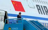 Chủ tịch Trung Quốc Tập Cận Bình đến Đà Nẵng dự APEC