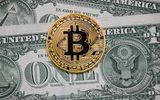 """Giá bitcoin về dưới 6.000 USD sau khi """"lên đỉnh"""" gần 8.000 USD"""