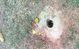 Vụ vật thể lạ phát nổ, 4 học sinh bị thương: Gửi mẫu vật đi giám định