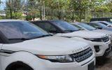 Tin tức - Hàng chục ô tô chuyên dụng nhập khẩu về cảng không có người nhận