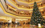 10 cây thông Noel đắt nhất thế giới