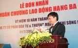 Bắt ông Đinh Mạnh Thắng, em trai ông Đinh La Thăng