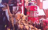 Thành phố đặc biệt được đón Noel quanh năm