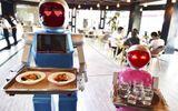 Robot phục vụ hành khách tại sân bay Nhât Bản