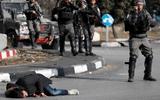 Hàng trăm người Palestine thương vong trong vụ biểu tình về vấn đề Jerusalem