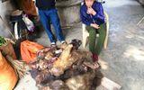 Bắt quả tang người phụ nữ đưa 7 con khỉ đã chết đi tiêu thụ