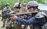 Mỹ phê chuẩn giấy phép thương mại, xuất khẩu vũ khí cho Ukraine