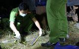 Vụ hỗn chiến giành đất ở Đắk Lắk: Bắt nghi phạm nổ súng