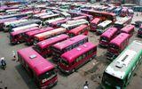 Hơn 24.000 ô tô quá niên hạn bị thu hồi, nhiều xe vẫn được rao bán