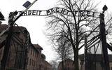 Người đàn ông Đức lĩnh án 18 tháng tù vì post hình cùng chú thích phỉ báng lên Facebook