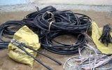 Băng trộm dây cáp điện lãnh 45 năm tù