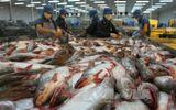 Việt Nam khiếu nại WTO về việc Mỹ áp thuế mặt hàng cá phi lê