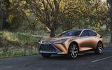 Tin tức - Ra mắt Lexus SUV LF-1 Limitless, đẹp long lanh