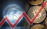 """Giá Bitcoin hôm nay 21/1: """"Loanh quanh"""" ở vùng giá thấp"""