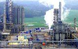 Tin tức - Đại gia Thái muốn mua trọn Hóa dầu Long Sơn