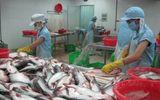 Tin tức - Xuất khẩu cá tra có thể đạt 1,85 tỷ USD trong năm 2018