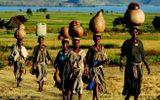 Châu Phi thất thoát tới 80 tỷ USD mỗi năm