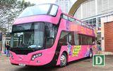 Lộ diện xe buýt 2 tầng mui trần đưa đội tuyển U23 Việt Nam diễu phố