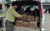 Bị phát hiện chở gỗ lậu, tài xế bỏ xe và gỗ thoát thân