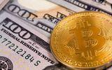 Giá Bitcoin hôm nay 31/1: Tụt thêm 1.300 USD, Bitcoin sắp mất ngưỡng 10.000 USD