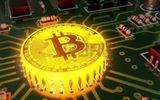 Giá Bitcoin hôm nay 1/2: Giảm 600 USD, Bitcoin xuống mốc 9.000 USD