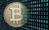 """Giá Bitcoin hôm nay 2/2: Nhà đầu tư thất thần vì Bitcoin lao xuống """"vực sâu"""" 8.000 USD"""