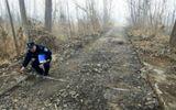 Kẹt tiền tiêu Tết, thanh niên đào trộm 800m mặt đường đem bán phế liệu