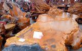 Chiêm ngưỡng bộ bàn ghế gỗ lũa hoành tráng giá 690 triệu đồng