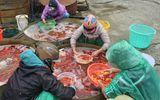 Video: Chợ cá chép Yên Sở nhộn nhịp trước ngày cúng ông Táo